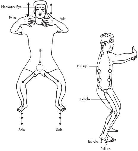 Cum să ai oase mai puternice prin Iron Shirt Chi Kung
