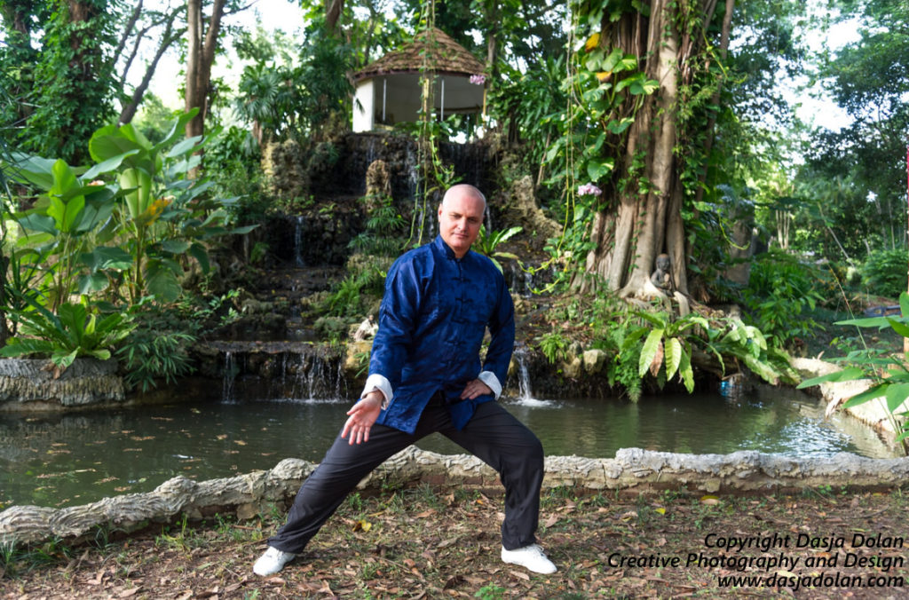 Costin Vasile, instructor Tai Chi Chuan